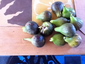 FIGS FROM OUR GARDEN