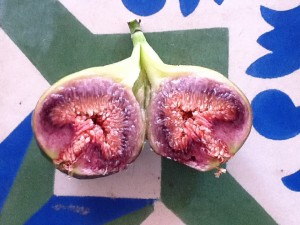 FIGS FROM OUR GARDEN TWO